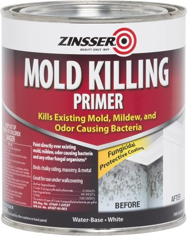 Rust-Oleum 276087 Mold Killing Primer